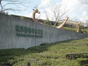 2011_0225shikinomori0041