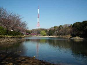 2011_0406mitsuikepark20110011